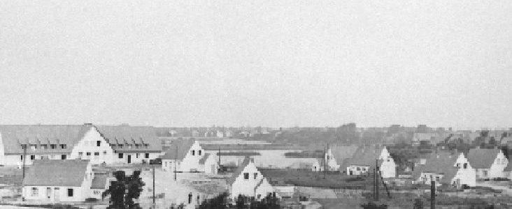 Gebiet am Tremser Teich in den 50er Jahren